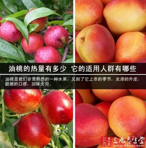 一个桃子多少热量_一个油桃的热量 它的适用人群有哪些 - 关桐时尚网